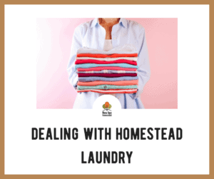 Dealing with Homestead Laundry
