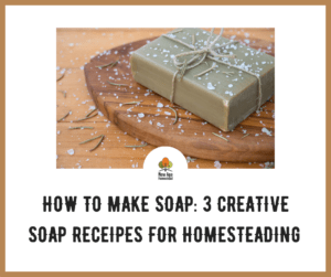 How to make soap for homesteading